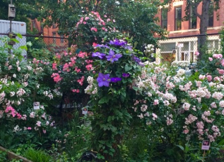 LaGurardia Corner Gardens on LaGuardia Place at Bleecker Street